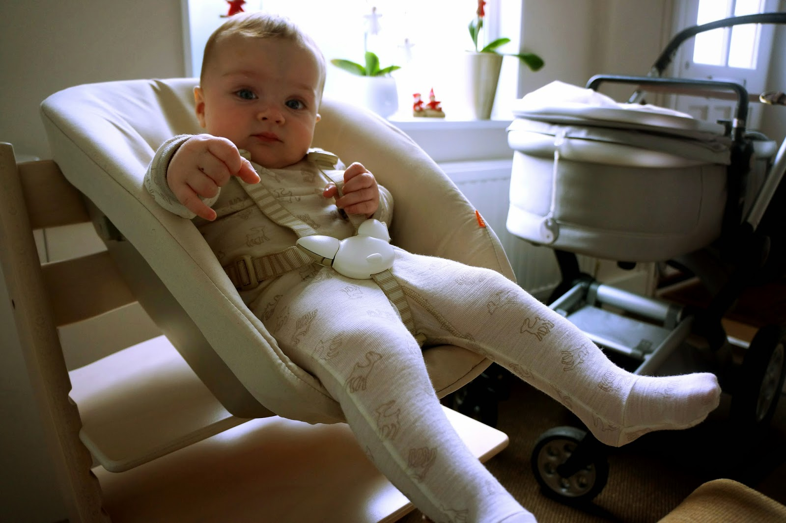 stokke 4 point harness instructions